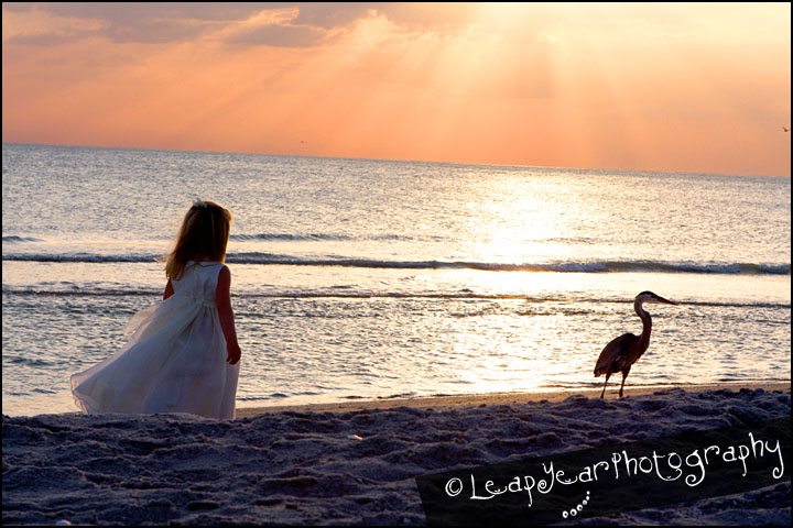 Captiva Childrens Photographer