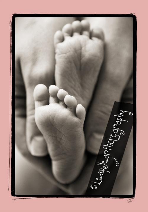 Sanibel Baby Photographer