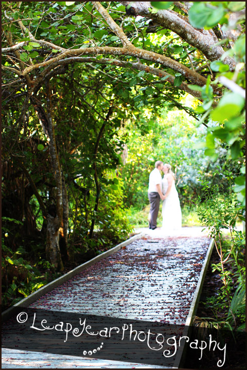 Sanibel-Weddings